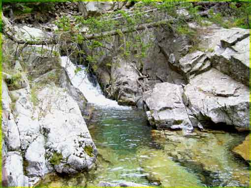 Pêche en torrent d'altitude